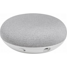 Google Home Mini Gray Color