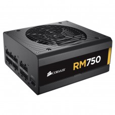 Corsair RM750 750Watt 80 Plus Gold Certified Fully Modular Power Supply